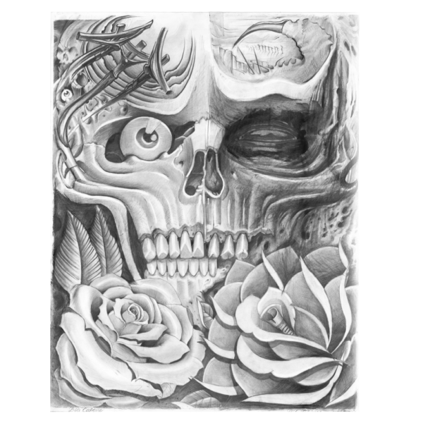 skulls-roses-for-sale-600x600-no-bg